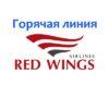 Горячая линия Red Wings