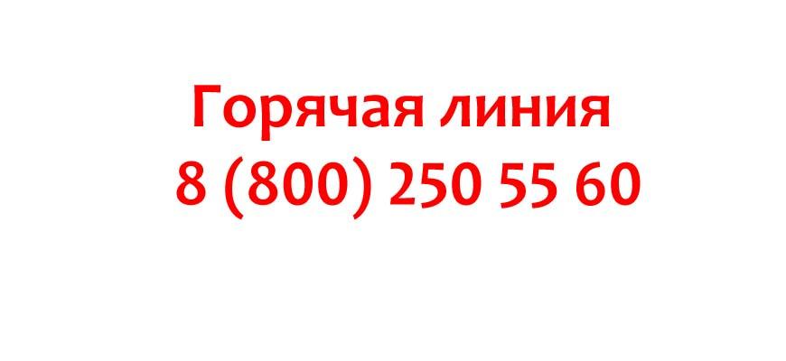 Контакты компании TP-Link