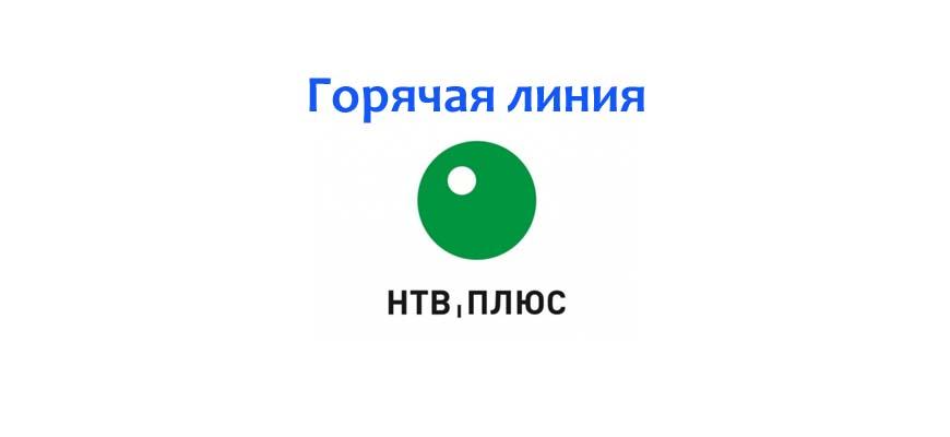 Горячая линия НТВ Плюс